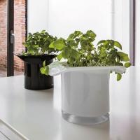 Adriani E Rossi Cabaret vase ваза C126BIX19