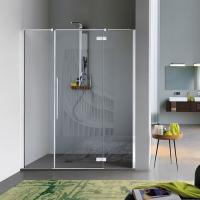 Samo Zenith B9182 душевая дверь в нишу ширина 120 см. стекло прозрачное, профиль хром